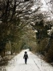 Woman walking through the woods in the snow, Berkshire, United Kingdom — Stock Photo