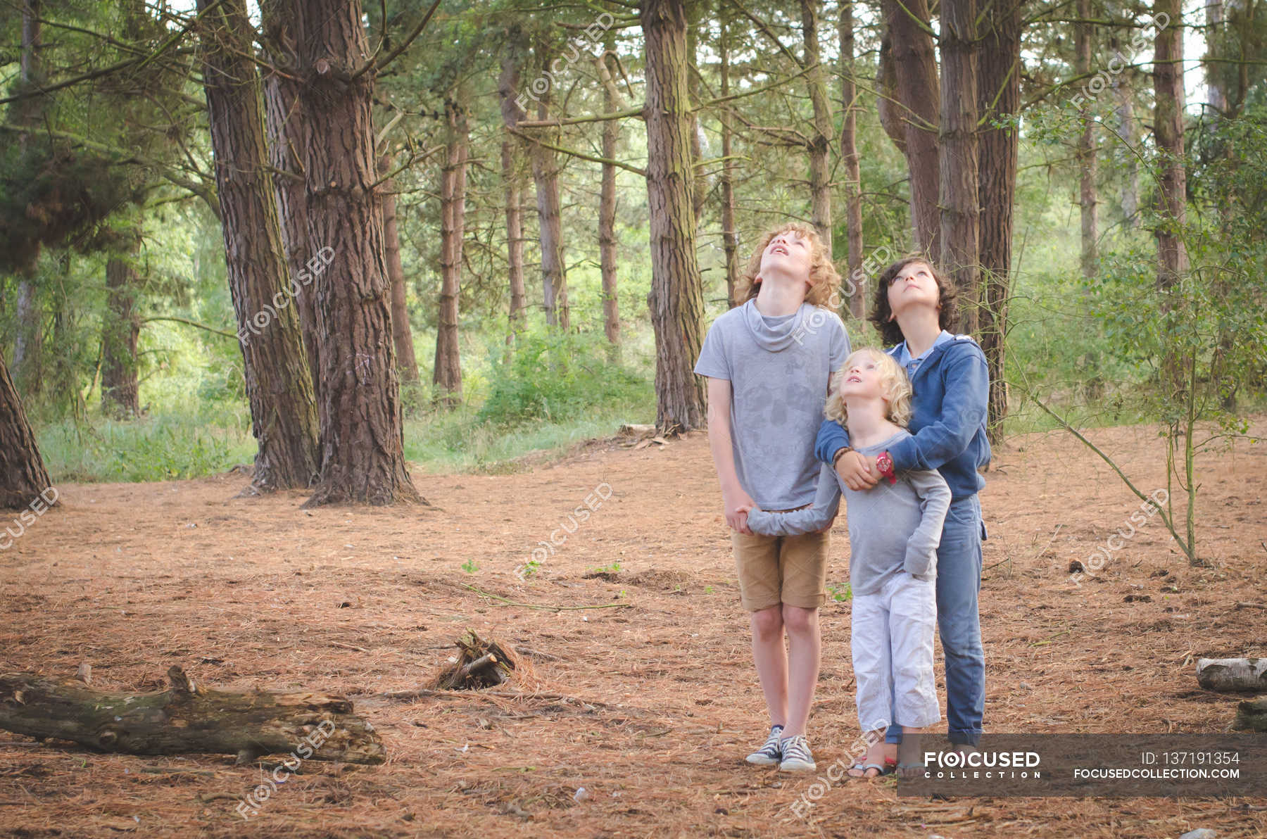 Секс групповой в лесу фото, Три худенькие молодухи раздеваются в лесу секс фото 18 фотография