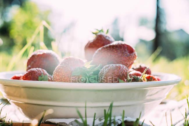 Weißer Teller mit frischen Erdbeeren — Stockfoto