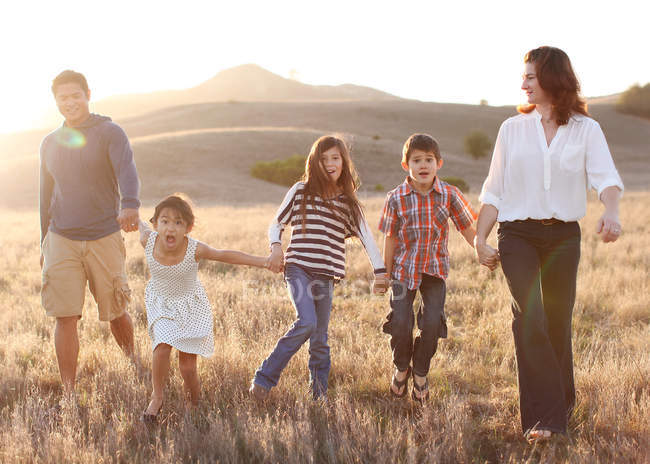 Famille tenant la main et marchant dans la prairie — Photo de stock