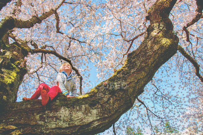 Smiling girl sitting on tree branch — Stock Photo