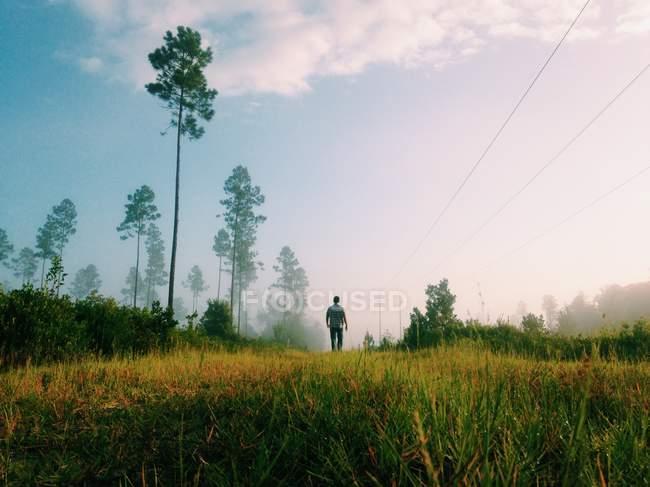 Man walking in grass — Stock Photo