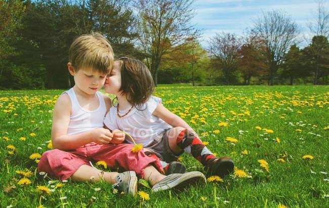 Mädchen küsst Jungen auf Wiese — Stockfoto