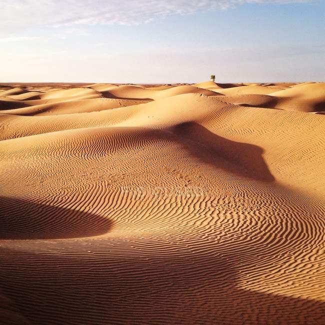 Пустеля Сахара пусто — стокове фото