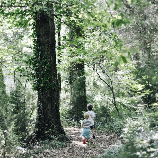 Two boys walking in woods — Stock Photo