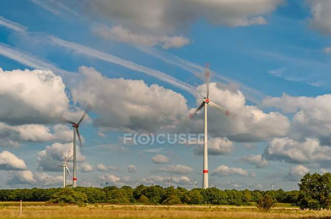 Wind turbines in field — Stock Photo