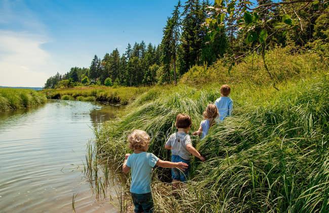 Дети, прогуливаясь по высокой траве — стоковое фото