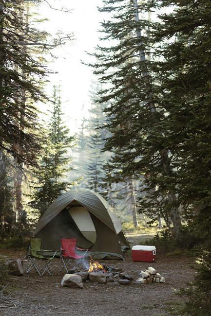 Place de camping vide — Photo de stock