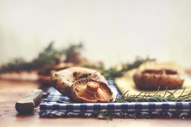 Champignons und Rosmarin auf Tisch — Stockfoto