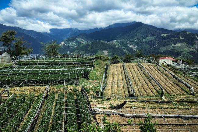 Переглянути на краєвид на Тайвані — стокове фото