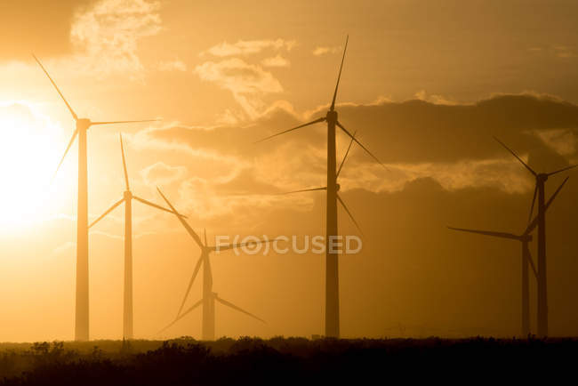 Moinhos de vento de San Gorgonio Pass Wind Farm — Fotografia de Stock