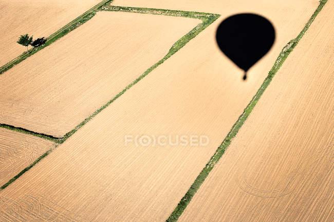 Sombra de globo de aire en campos - foto de stock