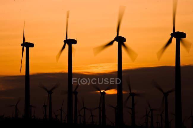 Éoliennes au coucher du soleil — Photo de stock