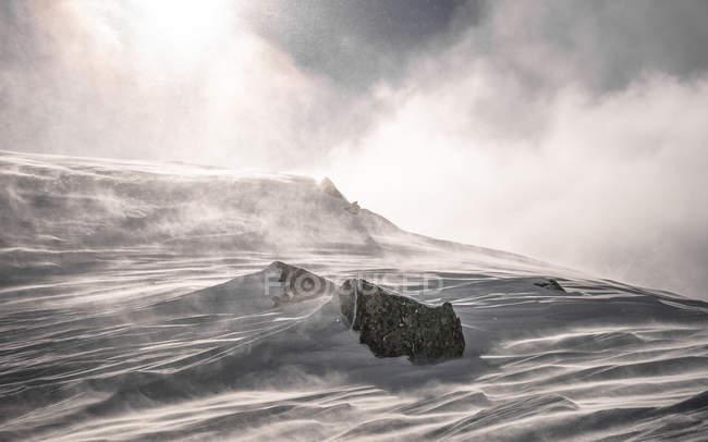Снег буря пейзаж — стоковое фото