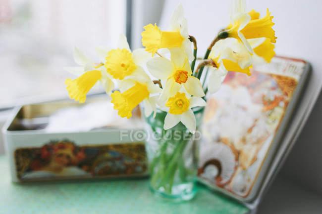 Narcisos amarelos em vaso — Fotografia de Stock