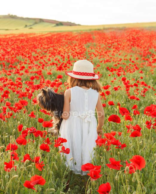Девушка держит собаку в поле маков — стоковое фото