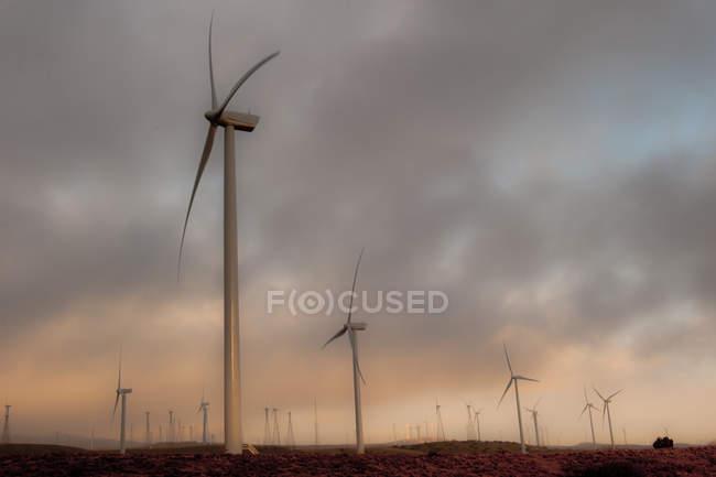 Vue des éoliennes — Photo de stock