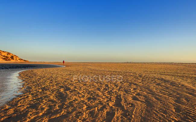Hombre de pie en la playa - foto de stock