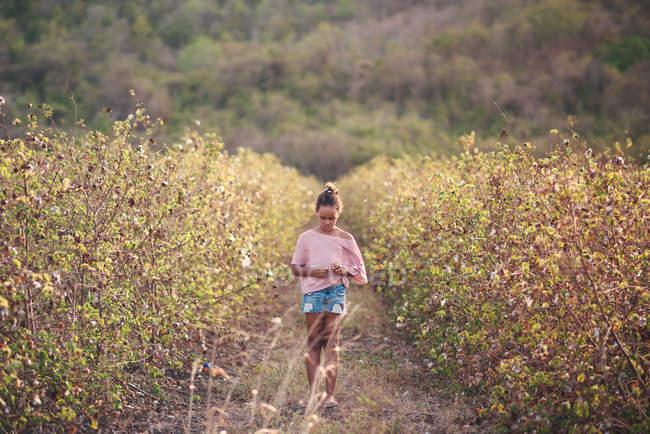 Ragazza che cammina attraverso il campo di cotone — Foto stock