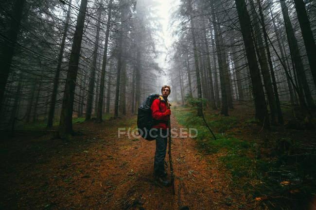 Caminhante em pé na trilha na floresta — Fotografia de Stock
