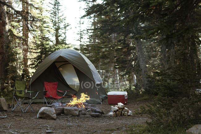 Camping im Wald mit Lagerfeuer — Stockfoto