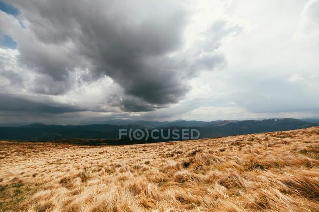 Paysage panoramique avec champ — Photo de stock