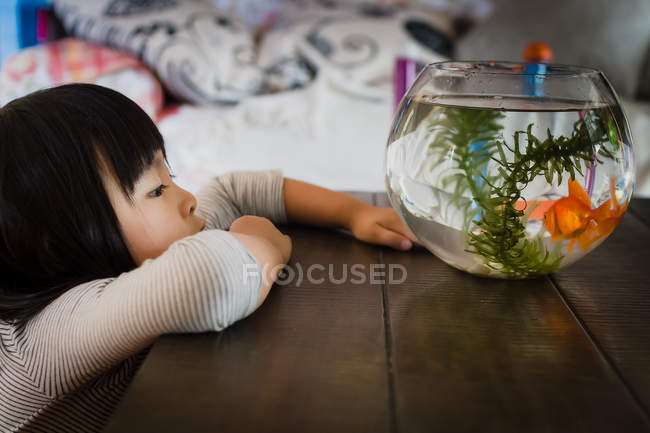 Girl looking at fishbowl — Stock Photo