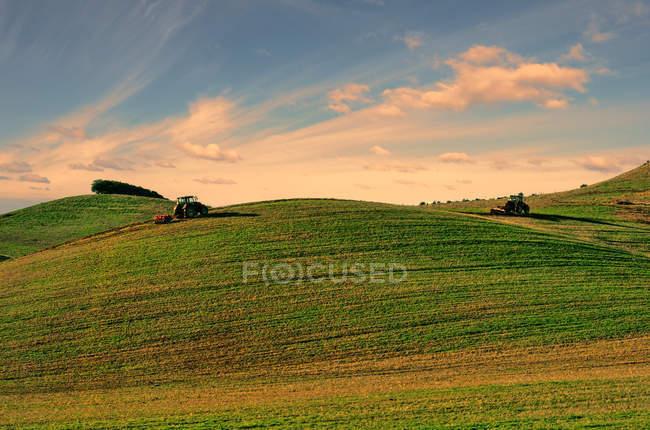Traktoren arbeiten auf der grünen Wiese — Stockfoto