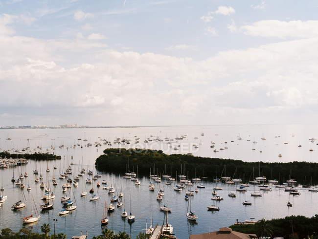 Miami, Barche a vela nella baia — Foto stock