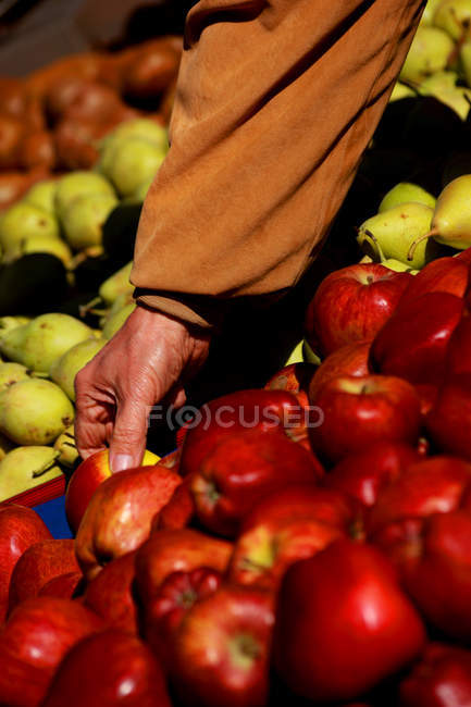 Male hand choosing apples at market — Stock Photo