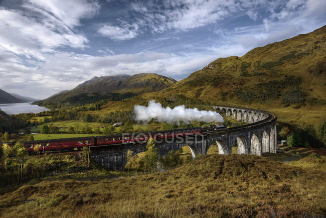 Dampfzug passiert Viadukt — Stockfoto