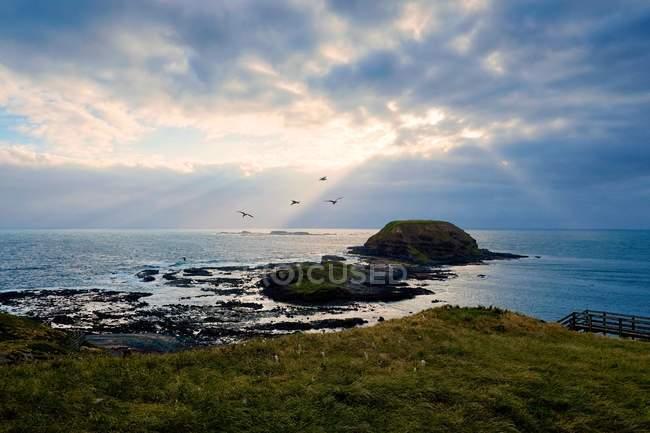 Rocky shoals seen from grassy shore — Stock Photo
