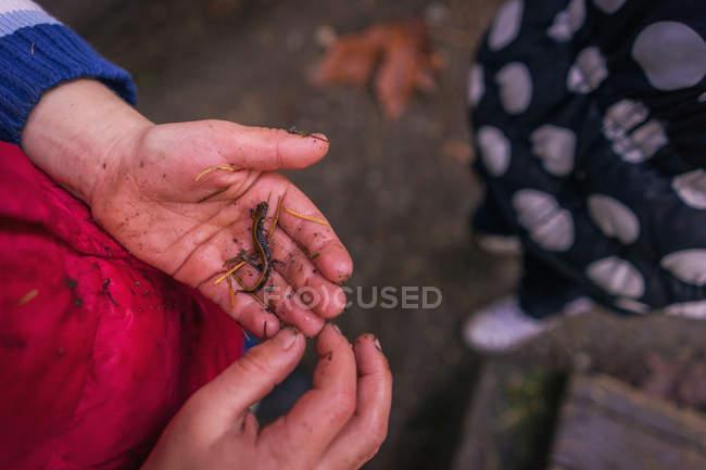 Boy holding small lizard — Stock Photo