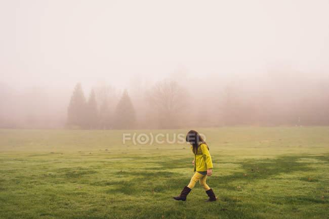 Menina no parque no dia nebuloso — Fotografia de Stock