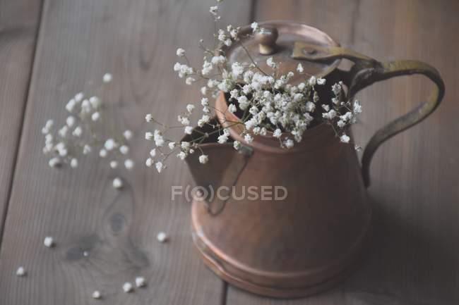 Bebés aliento flores - foto de stock
