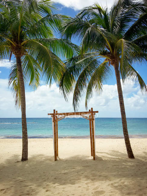 Wedding gazebo between palm trees — Stock Photo