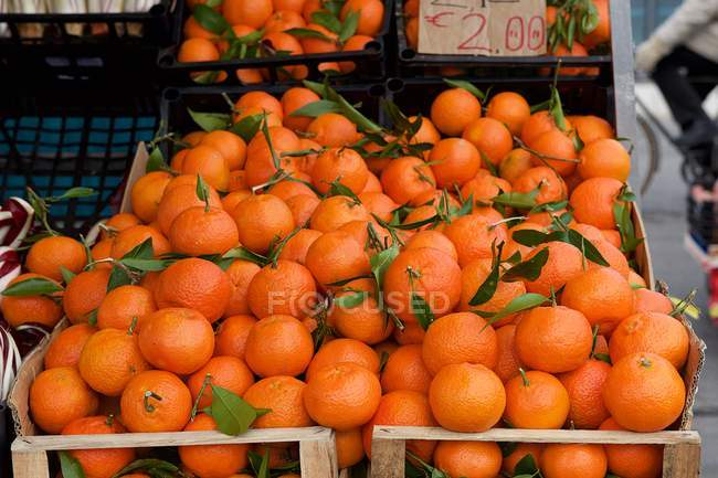 Fresh organic tangerines — Stock Photo