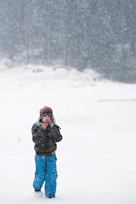 Boy walking through forest — Stock Photo