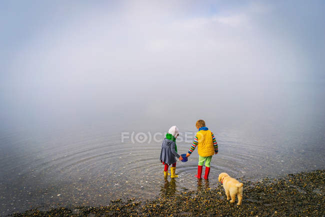 Boy and girl with puppy dog — Stock Photo