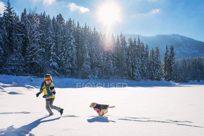 Puppy dog running after boy — Stock Photo