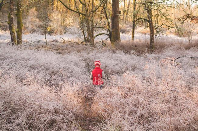 Boy walking in forest — Stock Photo
