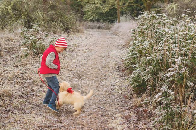 Ragazzo che gioca con cucciolo di cane nella foresta — Foto stock
