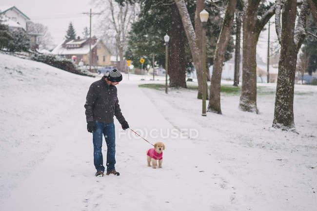 Man walking with dog on snowy street — Stock Photo
