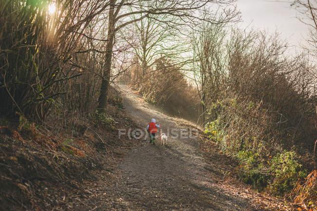 Garçon prenant chiot récupérateur pour la promenade — Photo de stock