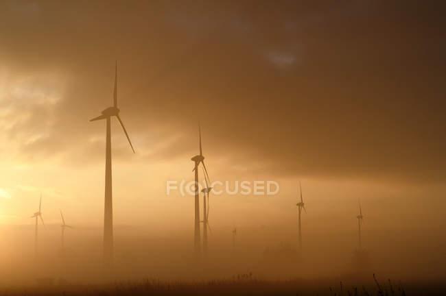 Turbinas eólicas em nevoeiro — Fotografia de Stock