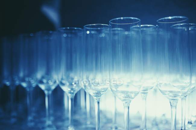 Rows of champagne glasses — Stock Photo