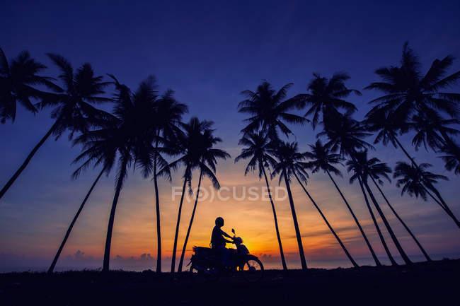 Motociclista andar sob as palmeiras — Fotografia de Stock