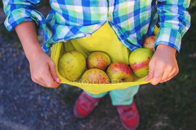Boy holding freshly picked apples — Stock Photo