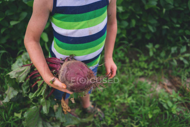 Boy holding a beetroot — Stock Photo