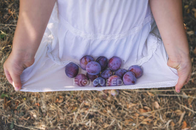 Girl carrying freshly picked plums — Stock Photo